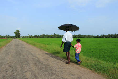 alappuzha: KUTTANAD, INDIA - JUL 03,2012- An unidentified farmer walks with a boy long the paddy fields in Kuttanad,India. Paddy is the major crop in the region thats situated below the sea level.