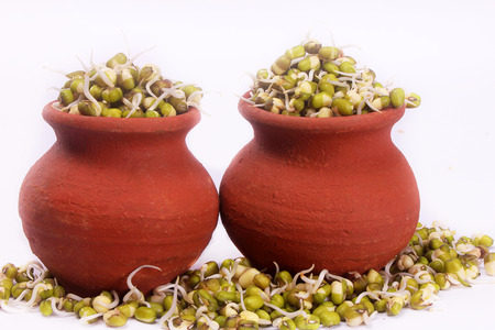 mung bean sprouts on pot with white backdrop Stock Photo
