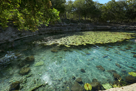 Cenote at Dzibilchaltun,Cenote Xlacah situated in Dzibilchaltun zona archeologica area in Mexico Stock Photo