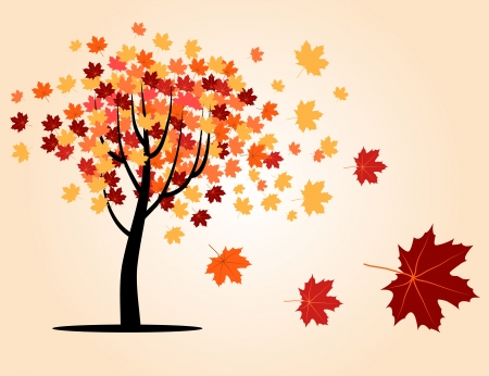 autumn maple tree with falling leaves