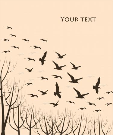bandada pajaros: siluetas de aves en vuelo y árboles, ilustración