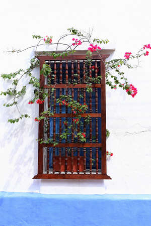 colorful vintage window with pink flowers