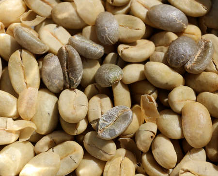 Coffee beans drying in the sun Stock Photo