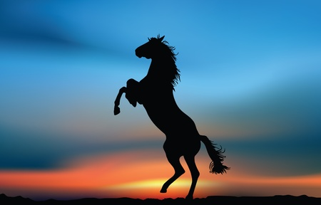 cavalry: Wild horse at the sunset. Illustration card Stock Photo