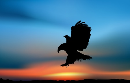 Eagle is hunting in the sunset. Artistic illustration Imagens