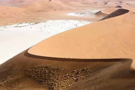wil: Dunes in the Namib desert