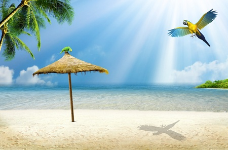 Tropical island: ocean sea and tropical beach with palm, beach umbrella and parrot photo
