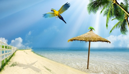 Tropical island: ocean sea and little tropical beach with palm, beach umbrella and parrots Stock Photo - 11943511