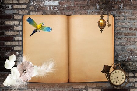 blanked: Old blanked book with parrot, flower, lantern and pocket watch on the brick wall background Stock Photo