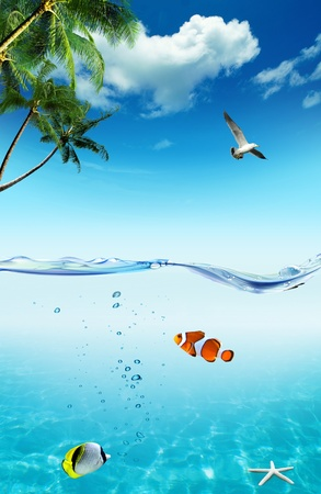 Ocean and tropical fishes with palm trees and seagull