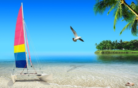Tropical beach: ocean sea and tropical beach with with boat and palm trees