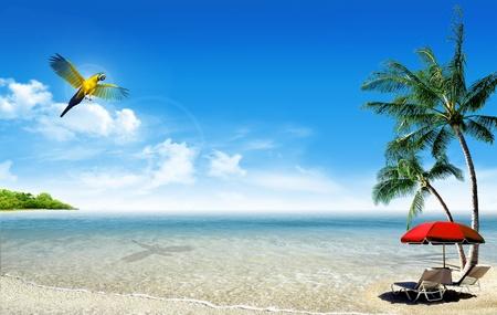 열 대 섬 : 바다와 야자수, 비치 파라솔, 갑판의 자와 앵무새 작은 열대 해변