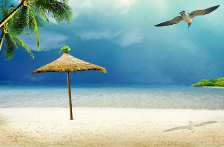 Tropical island  ocean sea and tropical beach with palm, beach umbrella and parrot photo