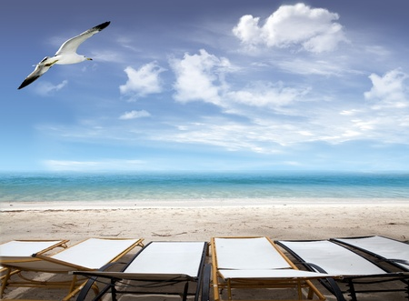 Tropical beach with deck chairs on the ocean and seagull flying in the blue sky with clouds  photo