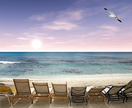 Tropical beach with deck chairs and seagull flying over the ocean at the sunrise photo