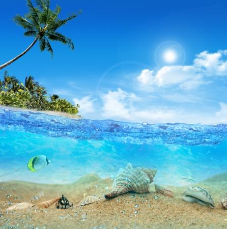 Underwater near the beach of the tropical island Stock Photo