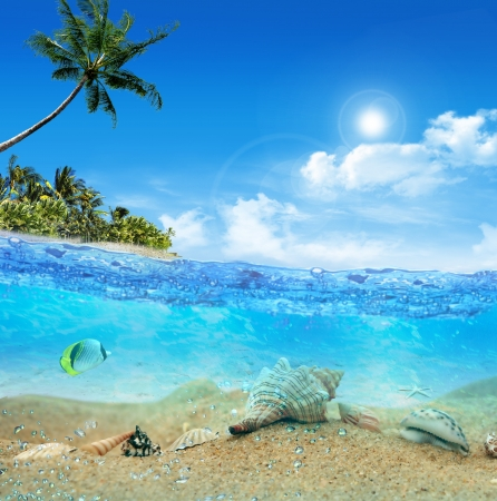 Underwater near the beach of the tropical island Stock Photo