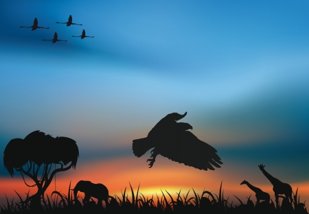 African savanna with animals at the sunset and hunting hawk and flamingos flying in the sky