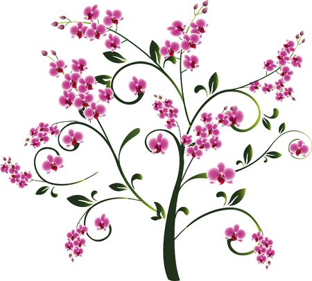 Tree with orchid flowers Vector
