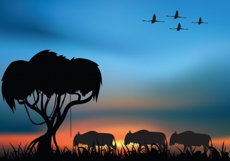 African savanna with acacia and wildbeast at the sunset Stock Vector - 14833407