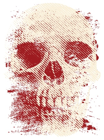 예술 두개골 일러스트
