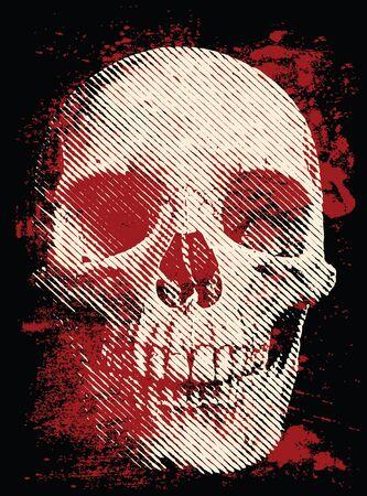 Artistic skull on the dark background