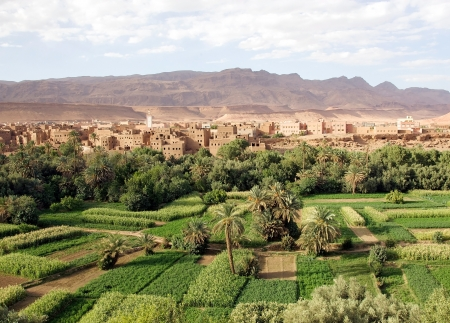 Morocco landscape: river valley, wadi, cultivations with traditional village and Anti Atlas Mountains in the background Stock Photo