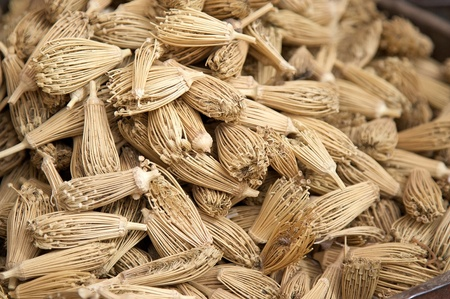 Amazing toothpicks at the souk, open-air marketplace, in the South of Morocco Stock Photo - 16459530