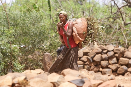 Machekie, Ethiopia, February 13, 2013: african woman, of the Konso ethnic group is coming to the village after the work in the fields