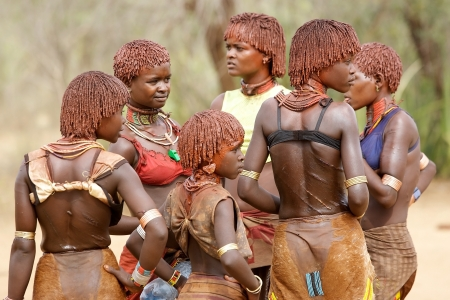 body paint: Turmi, Ethiopia, February 16, 2013: african women of the Hamer ethnic group, are showing their tribal hairstyle, body paint  and wipped back at the jumping of the bull ceremony
