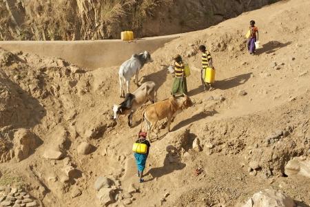 dep�sito agua: Weyto, Etiop�a, 19 de febrero de 2013: Mujer africana lleva el tanque de agua a lo largo de las orillas del r�o mientras que las mujeres est�n bajando con el tanque de agua al cauce del r�o en el r�o a lo largo de la carretera de Weyto de Arba Minch.