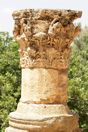 banias: Ancient column at the archaeological site at the Banias National Park, Israel