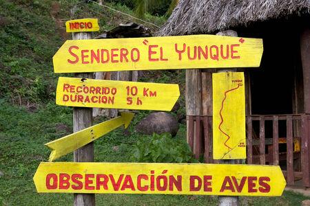 El Yunque Trail in the El Yunque National Park, Guantanamo Province, Baracoa, Cuba