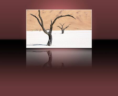 namib: Dead vlei in the Namib Naukluft Park, Namib desert, Namibia and reflection Stock Photo