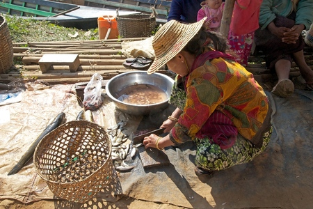 fish vendor: Burmese vendor is cutting fishes to sell at the Nan Pan village market on the Lake Inle, Shan State, Myanmar Editorial