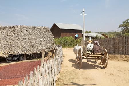 min: Burmese traditional vehicle in Min Nam Thu village, Bagan, Myanmar