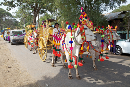 monastic: Carriage at the Shinbyu procession in a village along the road to Mount Popa, Myanmar. Shinbyu is the burmese term for the novitiation ceremony in the tradition of Theravada Buddhism, referring the celebration of marking the novice monastic ordination of