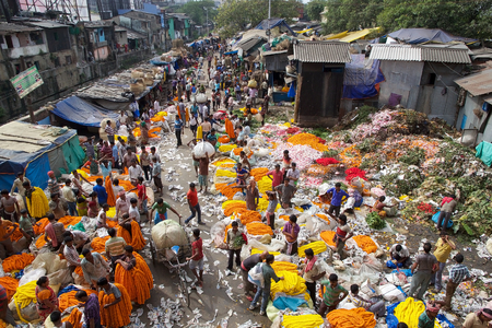 calcutta: Indian men are selling flowers at the flower market in Kolkata, West Bengal, India. The Mullik Ghat, or Mallik Ghat, is near the southeast end of Howrah Bridge. The flower market is fascinatingly colorful virtually 24 hours a day. Editorial