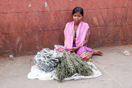 howrah: Indian young woman man is selling merchandise at the flower market in Kolkata, West Bengal, India. The Mullik Ghat, or Mallik Ghat, is near the southeast end of Howrah Bridge. The flower market is fascinatingly colorful virtually 24 hours a day.