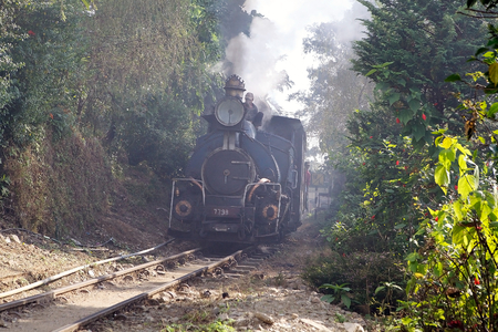 darjeeling: Darjeeling Himalayan Railway, Dajeerling, West Bengal, India. Darjeeling Himalayan Railway, nick name Toy Train, run from Siliguri to Darjeeling. It is a 60 centimetre narrow-gauge railway. Estabilished in 1881, it was declared a World Heritage Site by UN