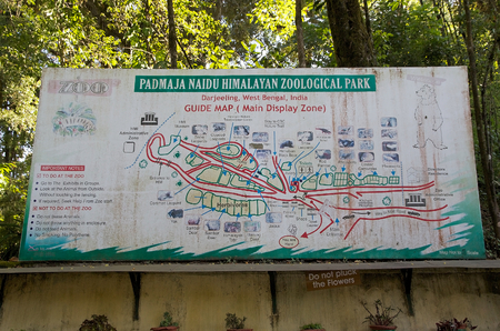 specializes: Padmaja Naidu Himalayan Zoological Park guide map, Darjeeling, West Bengal, India. The zoo was open in 1958 an average elevation of 2134 metres. it is specializes in breeding animals adapted to alpine condition and has succesful captive breeding program f