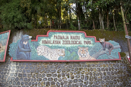 specializes: Padmaja Naidu Himalayan Zoological Park, Darjeeling, West Bengal, India. The zoo was open in 1958 an average elevation of 2134 metres. it is specializes in breeding animals adapted to alpine condition and has succesful captive breeding program for the sno