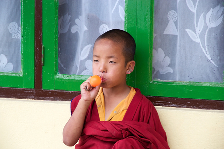 sectarian: Young buddhist monk with traditional robes is playing with balloon at the Rumtek Monastery, Sikkim, India. Rumtek Monastery is a gompa located near gangtok, capital of Indian state of Sikkim. It is a focal point of the sectarian tensions within the Karma  Editorial