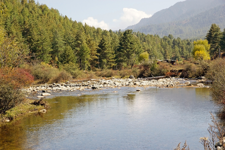 largely: River and forest in Chhume Valley, Bhutan. Bhutans natural heitage is largely intact