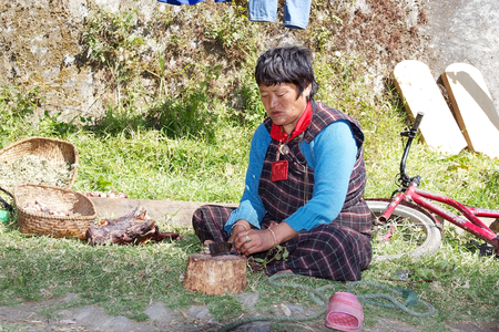 cutting meat: Bhutanese woman is cutting meat at the Chhume village, Bhutan.