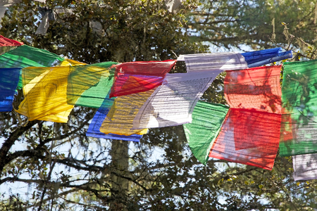 blowed: Prayer flags along the footpath to the Tigers Nest, Paro, Bhutan. The flags do not carry prayers to God, but the prayers are blowed into the wind to spread the good will and compassion into all pervading space.