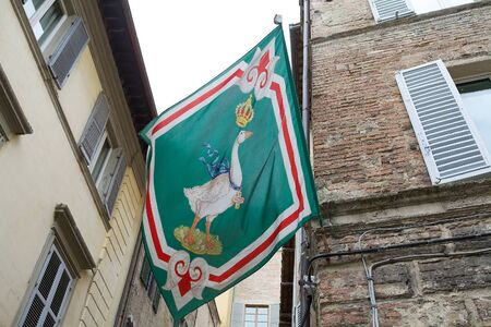 palio: Oca flag at the Oca, goose, contrada border, Siena, Tuscany, Italy. Oca contrada is one of 17 districts in Siena that race in the Palio di Siena. Oca contrada is situated just to the west of Piazza del Campo.