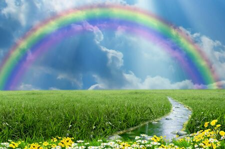 Grassland with stream and flolwers with rainbow in the sky