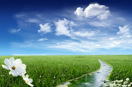 water stream: Landscape with stream and flower and a sky with clouds in the background Stock Photo