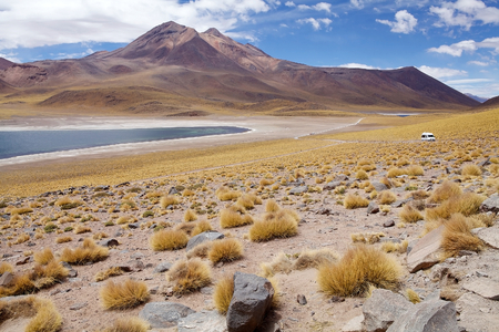 metres: Miscanti Lagoon are a brackish water lakes located 4000 metres above the sea level in the Antofagasta Region in northern Chile, about 100 Km from San Pedro de Atacama.